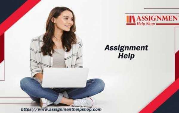 How Assignment Help Reduce The Stress Of Timely Submission?