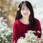 Bong xinh Kem Profile Picture